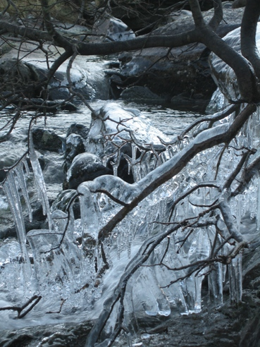 Icicles in the stream by Ogwen Cottage.
